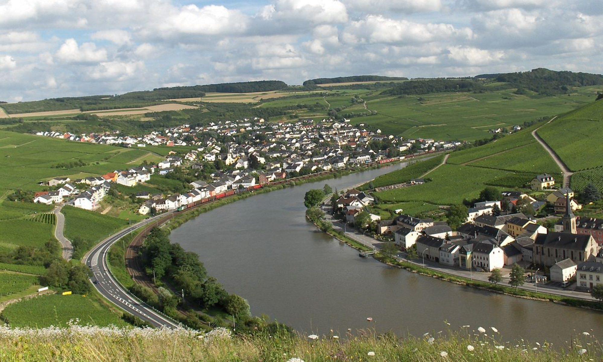 FDP Trier-Saarburg